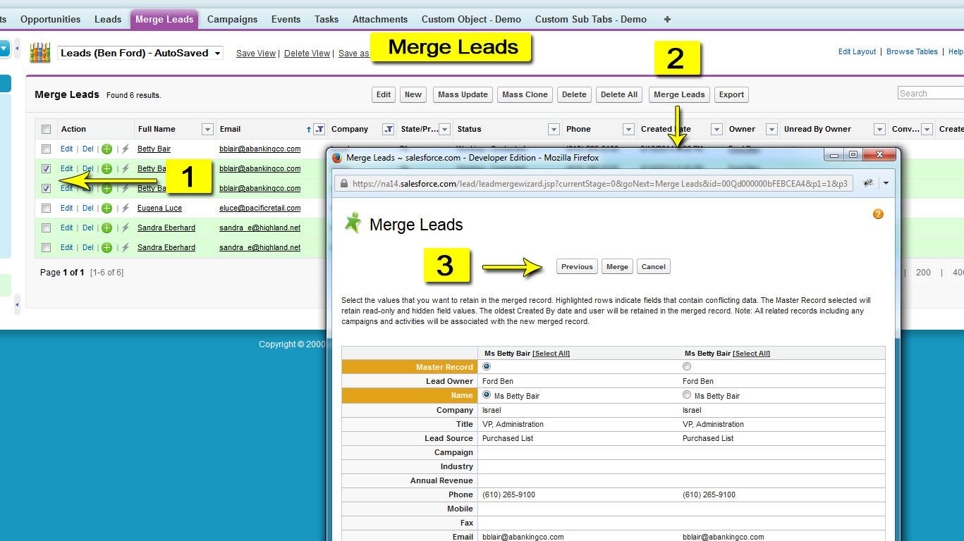 Smart Mass Update - Mass Merge Leads
