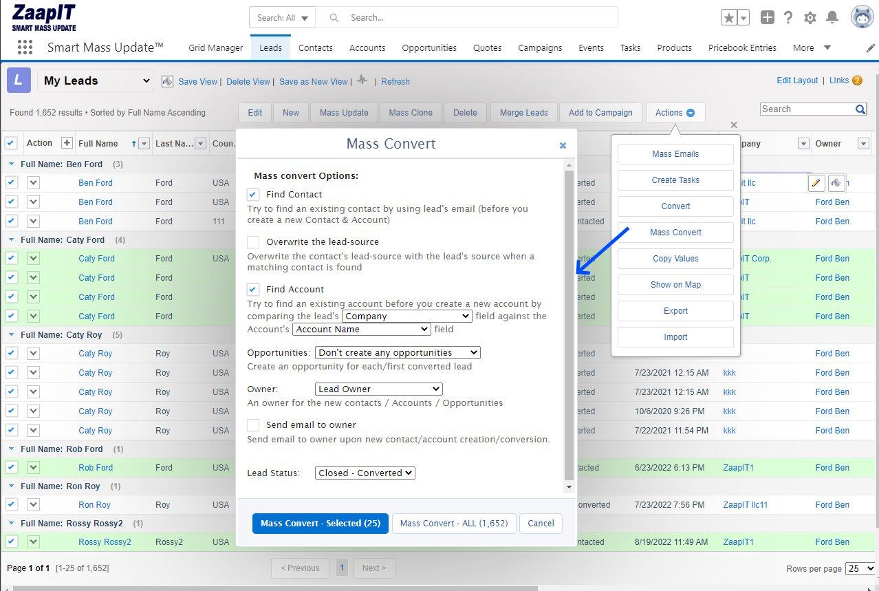 Mass Convert Leads in Salesforce