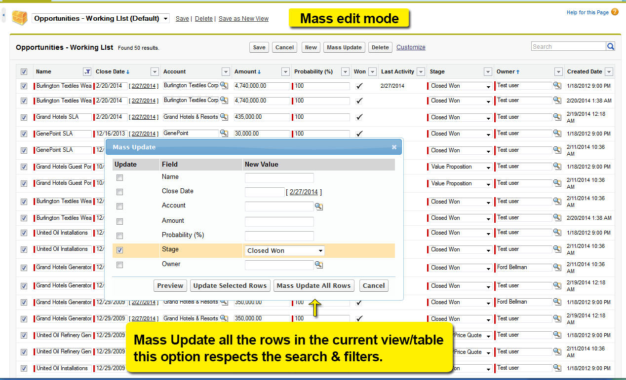 Smart Mass Update - Edit View